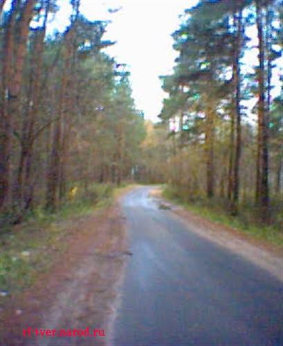 Природа тверской области